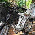 Kostenlose Fahrradnutzung